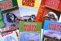 International Pigeon World